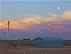 A Full Moon and A Colorful Sky