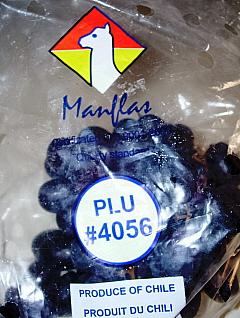 Manflas Grapes Logo