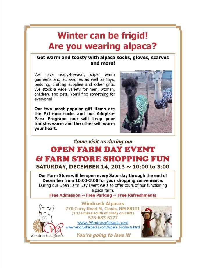 12.14.13 Farm Day flyer