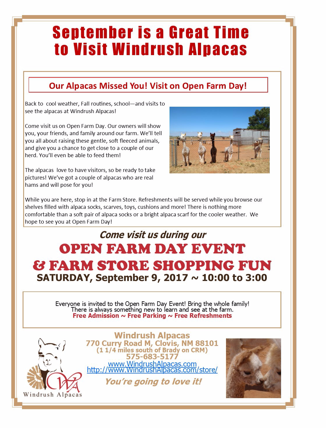 September is a great time to visit Windrush Alpacas