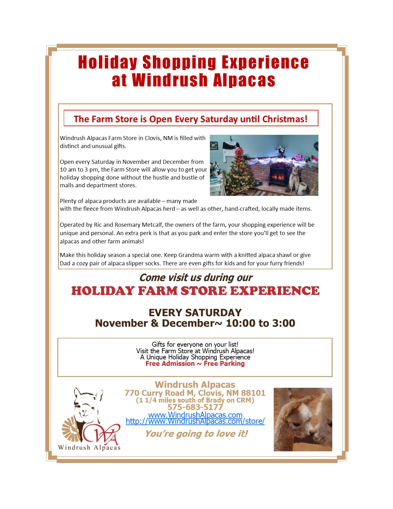 2017 Holiday Shopping Experience Flyer Final
