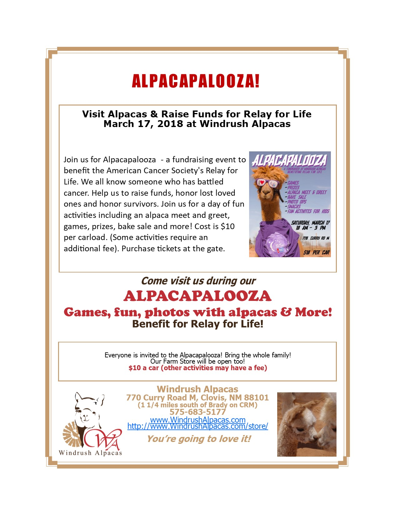 Alpacapalooza Flyer