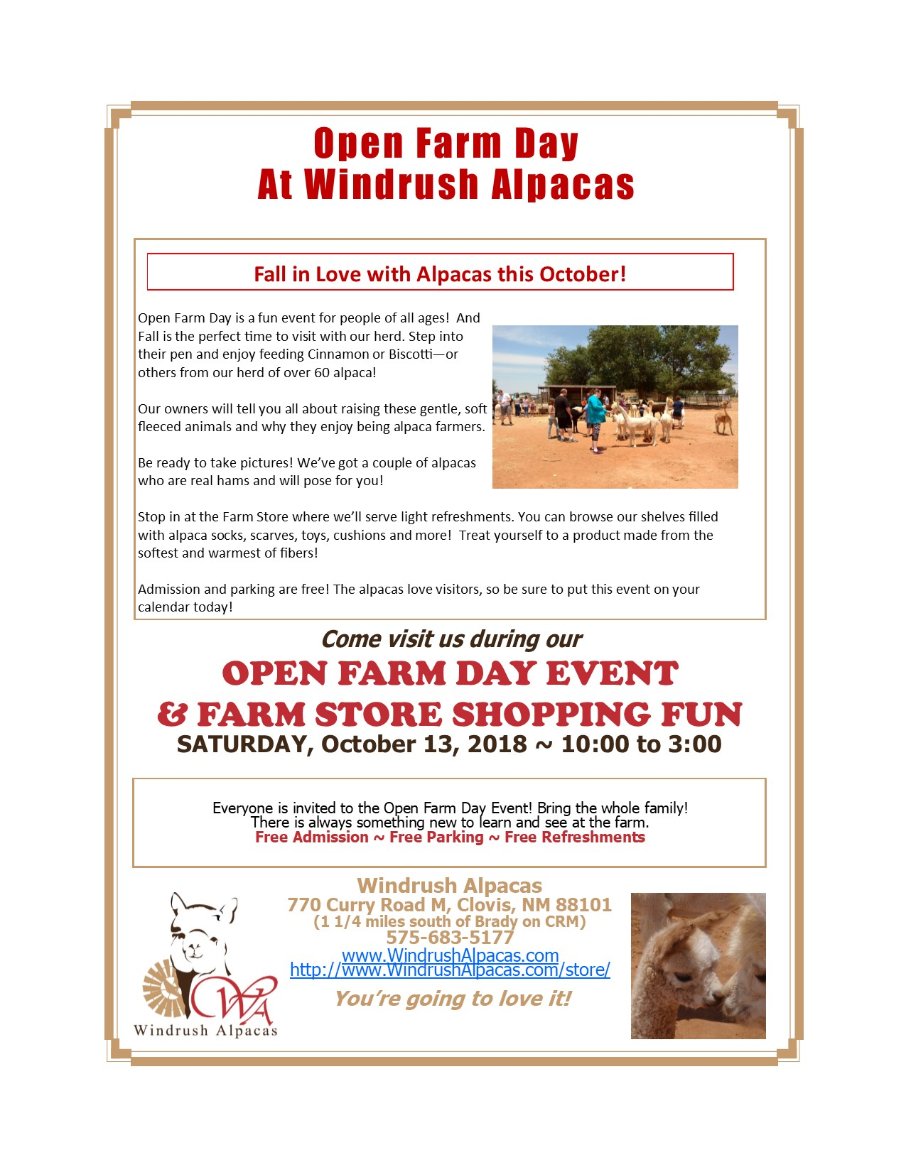 Open Farm Day at Windrush Alpacas