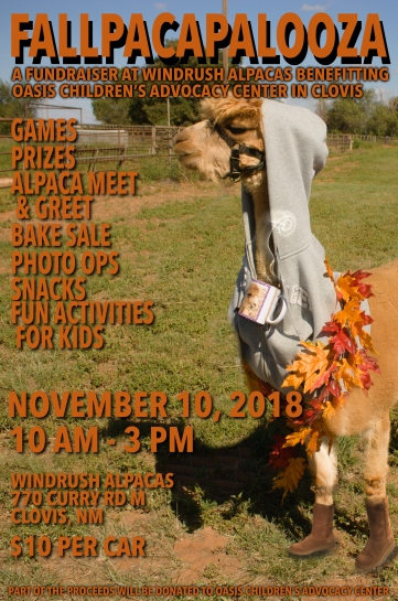 Fallpacapalooza2 (1)